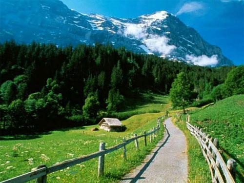 foto de trilha linda